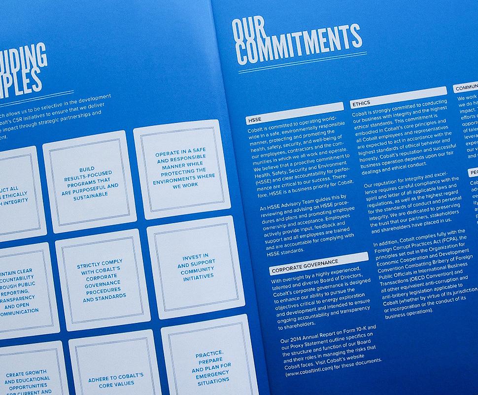 Cobalt International Energy Annual Report by Herring